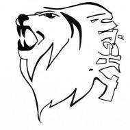 Lions Night